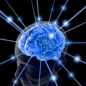 brain-300x299