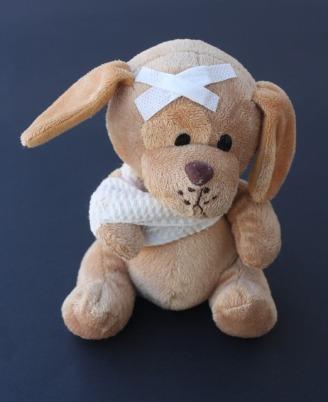 teddy-242831_640